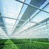 遮阳网室 遮阳棚(荫棚) 蔬菜大棚 花卉种植 温室大棚建设