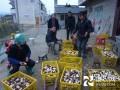 大球盖菇丰收了,贵州黄平县移民区村民笑了