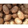 山东临沂芋头种植那里多量大山东芋头最新价格
