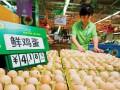 9月上旬以来超四成省区市鸡蛋价格下降