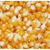求购高粱小麦玉米大豆麸皮等饲料原料