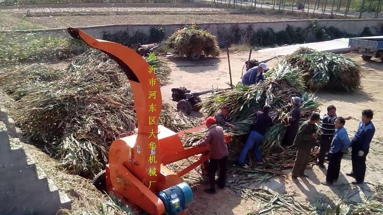 大型干鲜红薯秧铡草机青储好机械