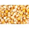 现金大量收购大豆玉米小麦高粱麸皮棉粕豆粕青饼次粉等