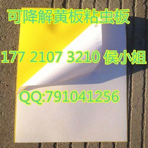 黄色粘虫板、蓝色诱虫板,双面涂胶覆膜悬挂式,绿色环保无公害