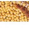 供应 大豆苷 瓜子金皂苷己 柳穿鱼黄素