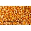 求购高粱大米玉米小麦淀粉豆类碎米等