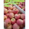 山东红富士苹果批发产地山东苹果价格山东苹果市场价格