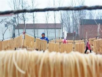 河南滑县:冬闲加工粉条增收忙