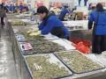 黑龙江齐齐哈尔海鲜身价火速跌了近五成