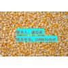 求购玉米、大豆、棉粕、菜饼、小麦、大麦