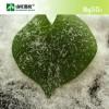 针状硫酸镁 工业级硫酸镁