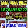供应油桃批发价格 临沂油桃产地 大棚油桃市场