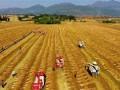云南罗平:农机跨区作业抢收丰收油菜