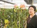 """她被称为""""花仙子"""" 要用鲜花让农民脱贫致富"""