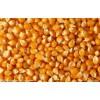 旺川饲料现金求购:玉米、碎米、大麦、棉粕、大豆、次粉