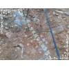 供应果园滴水管PE管|河北沧州青县小管出流套装