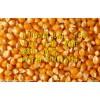【旺川饲料】求购玉米、大豆、高粮、DDGS、鱼粉