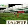 蔬菜种植必备手册,建设蔬菜大棚,选择芳诚温室