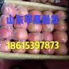 山东红将军苹果批发18615397873
