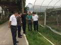 水利部灌排中心调研绵阳市节水灌溉工作