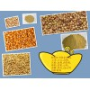 旺川求购:玉米、菜饼、棉粕、大豆、高粮