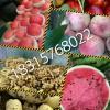 山东红富士苹果产地 红富士苹果批发价格