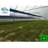 作物品种及生长条件,惠州选择适宜的温室大棚灌溉系统