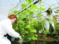 浙江湖州在全省率先出台农业品牌行动计划 (1)