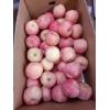 今日山东红富士苹果产地行情 红富士苹果产地批发