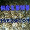 18615397873生姜吉祥彩票下载大黄姜吉祥彩票下载
