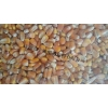 求购高粱大米糯米碎米玉米小麦豆薯类原料.