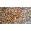 收购高粱大米玉米小麦等酿造原料.