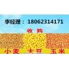大量收购玉米大豆高粱荞麦