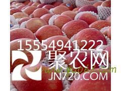 renhongda.143032
