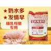 哺乳母猪饲料 中草药增食欲促产奶 母猪预混料厂家直销