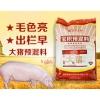大猪预混料出栏早肉质好 育肥猪复合饲料批发零售