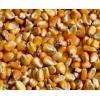 风达饲料求购玉米小麦高粱碎米淀粉