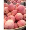 山东红富士苹果批发,今日价格行情,哪里批发便宜