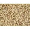 四川金富楼酒厂长期现款求购小麦高梁玉米