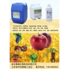惠缘生物科技专业生产生物菌土壤改良剂