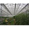 温室大棚造价 温室工程建设  山东豪达瑞科智能连栋玻璃温室