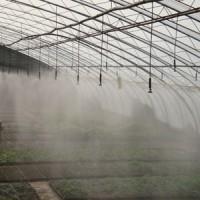 供应微喷头 温室微喷头 大棚微喷头 农业微喷头