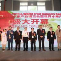 2020世界水果展打造新契机,水果市场发展势如破竹