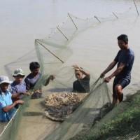 2020缅甸渔业考察团行程