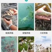 山东展鹏网业集团有限公司与您相约2021广州渔博会