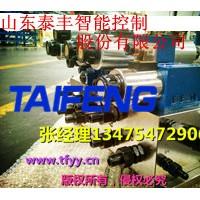 YX32-100DCV不带快速缸下腔Dg20山东泰丰液压供应
