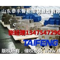 YN32-100GSCV带快速缸下腔Dg10山东泰丰供应
