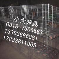 经销鸡笼兔子笼鸽子笼鹌鹑笼鹧鸪笼运输笼猫笼狗笼鸟笼貉笼